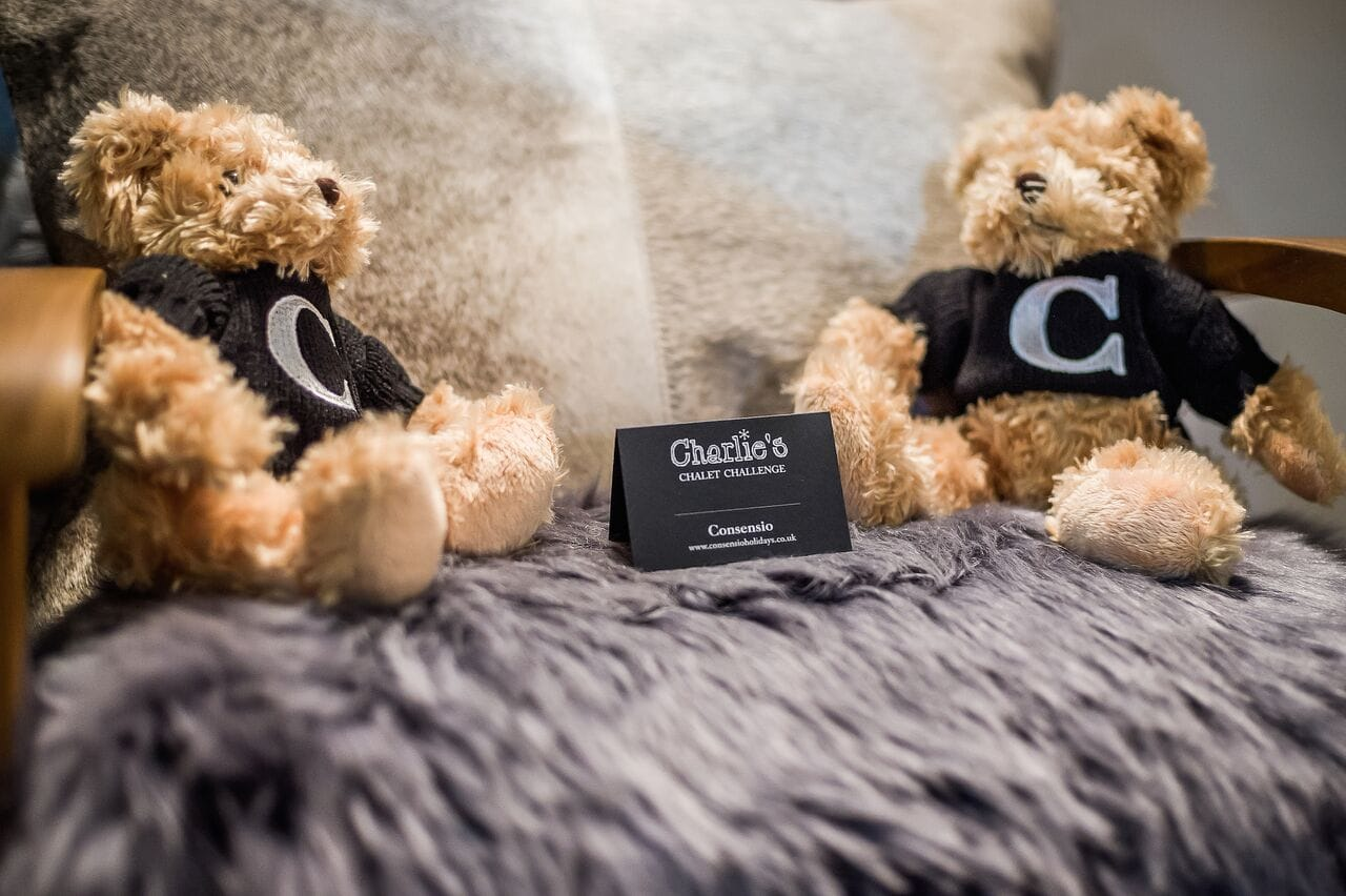 Charlie Bear, kids alpine experiences, companies who focus on kids